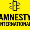 Pulwama killings: Amnesty slams 'excessive' use of force in Kashmir