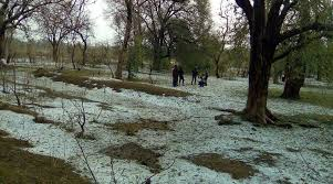 Hailstorm wrecks havoc in twin southern districts