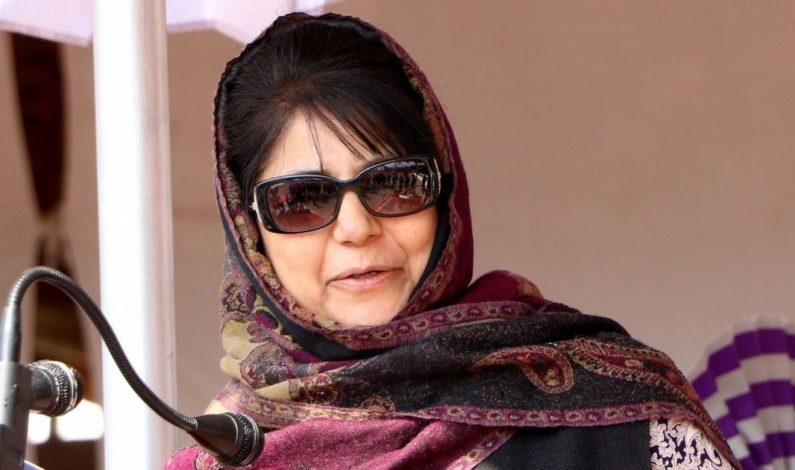 Reach out to workers of other parties, apprise them about situation in J&K: Mehbooba to party workers