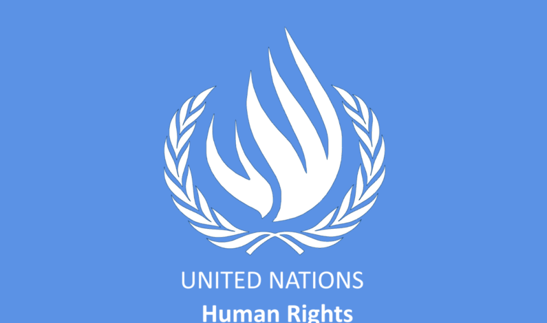 Big Story: First-ever UN Human Rights Report accuses India of 'unlawful killings' in Kashmir, bats for right to self-determination