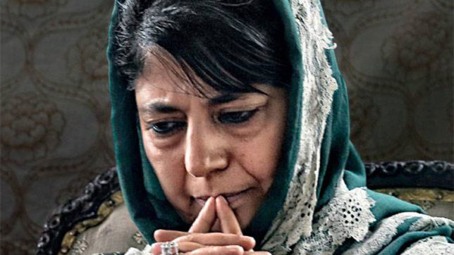 Safeguard of state's special position party's top most priority: Mehbooba