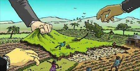 Concern: Kashmir has lost 22000 hectares of agricultural land in 16 years