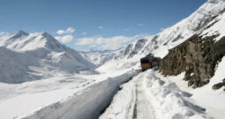 14 People Killed in Afghanistan Avalanche: Official