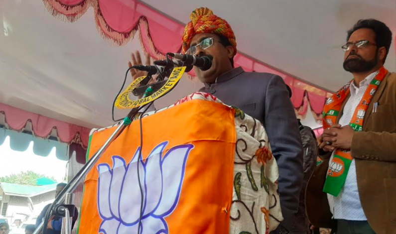 Rigging of 1987 polls only reason behind present situation in Kashmir: Ram Madhav in Anantnag