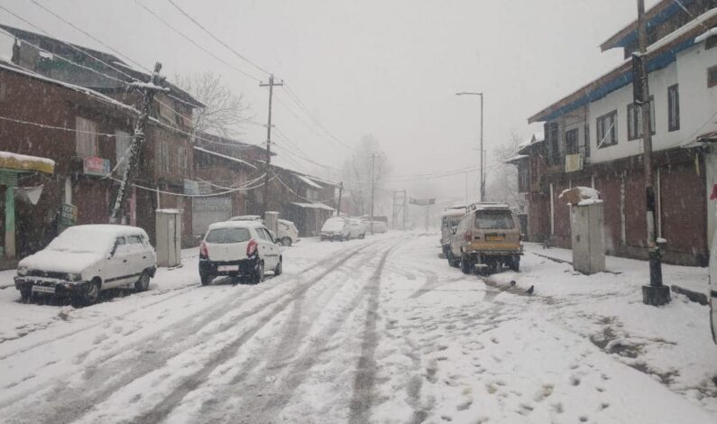 Cold Conditions Ease Slightly As Kashmir Braces For More Snow
