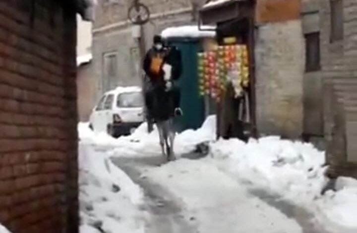 Amazon delivery boy from Srinagar riding horse to deliver parcels draws 'amazing' response from netizens