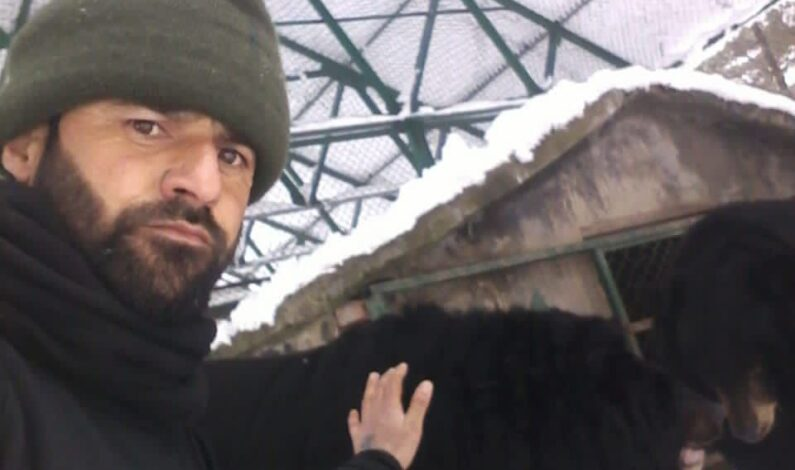 Meet Kashmir man who feeds food to wild bears by hand