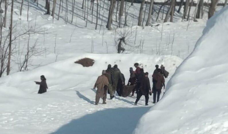 Unidentified body found in Shopian orchards