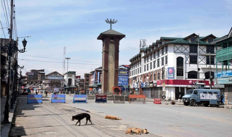 Covid Lockdown: 118 persons detained for defying curfew in J&K, 103 FIRs lodged, Rs 1 lakh fine slapped on 730 Covid protocol violators