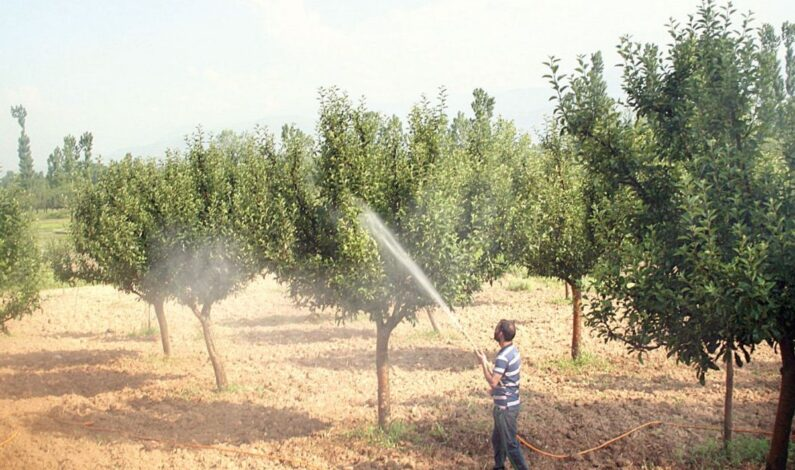 Over 15,000 kgs of spurious pesticides seized so far this year only in Srinagar