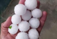 Hailstorm aftermath: Govt compiles report, says fruit crops in twin Kashmir districts suffer over 40% losses
