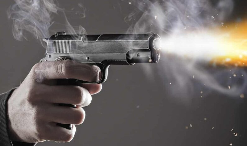 After killing two minor sons, father shoots self dead in Doda