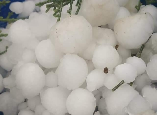 Cloudbursts, Hailstorms Cause Damage To Orchards, Standing Crops In Kupwara