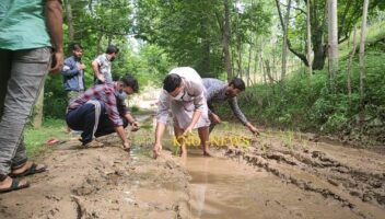 Budgam villagers plant paddy along road as protest