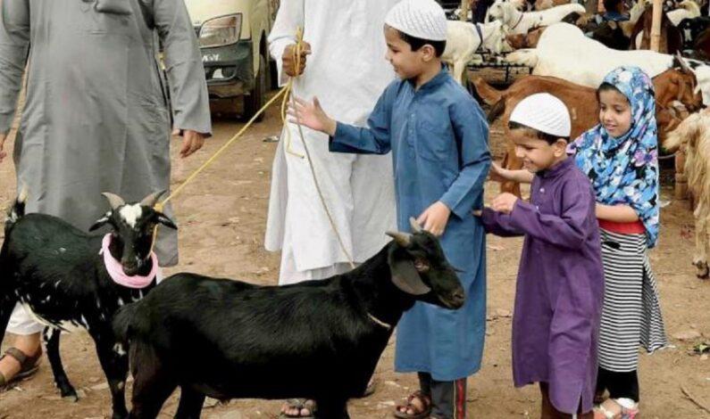 Ahead of Eid-ul-Adha, govt fixes rates for sacrificial animal in Kashmir