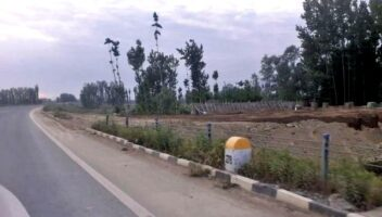 Highway Bottlenecks: Govt Forms Panel For Expeditious Forest Clearances